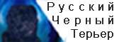 Русский черный терьер С Плещеева Озера